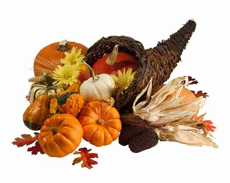 Thanksgiving Centerpiece Cornucopia : Cornucopia