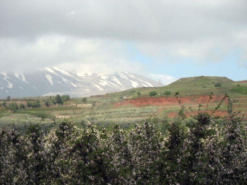 Mount-Hermon-2