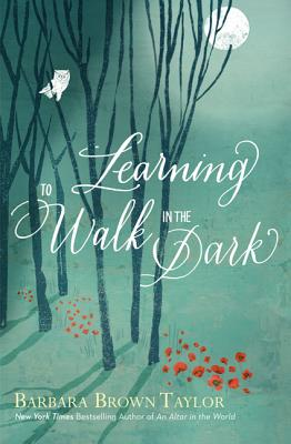 Learning-Walk-Dark