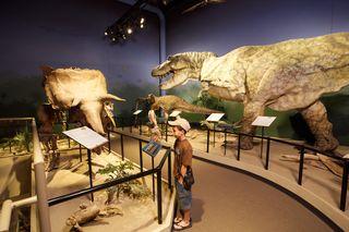 Dinosaurs-creation
