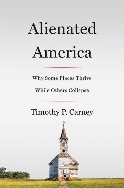 Alienated-america