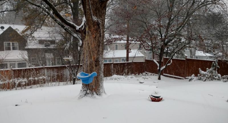 Snow-2018
