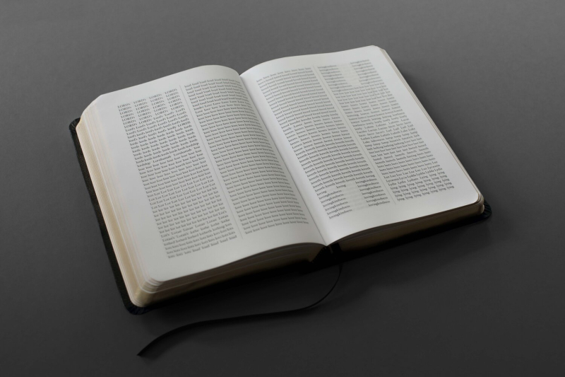 Bible-the