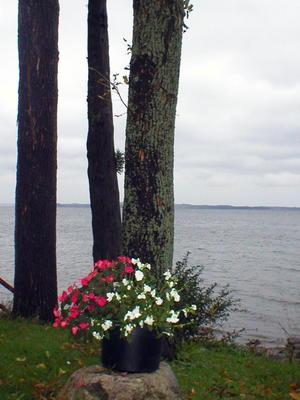 Vermont16